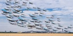 Летят утки и два гуся или стаи железных птиц (фоторепортаж)