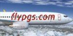 Авиакомпания Pegasus запустила регулярные рейсы в Стамбул из Нижнего Новгорода