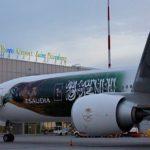 Снятие ограничений в Пулково обернётся для российских авиакомпаний миллиардными убытками